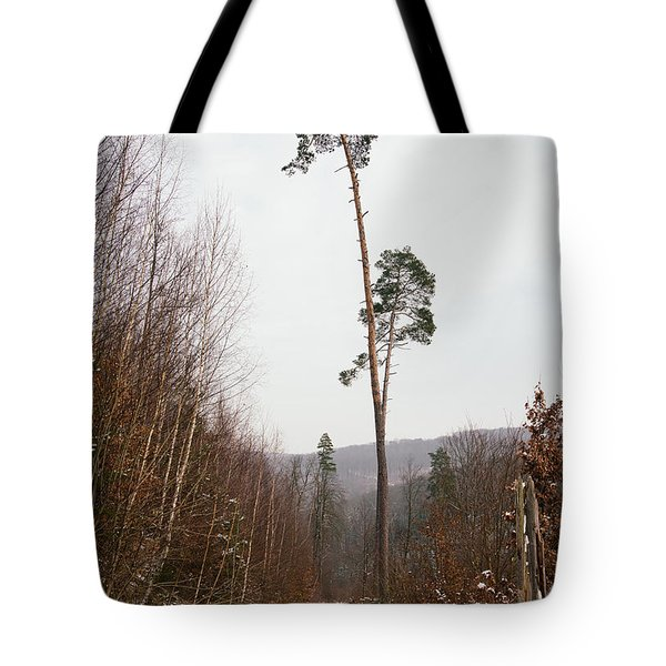 Large Trees In The Nature Park In Winter Tote Bag by Matthias Hauser