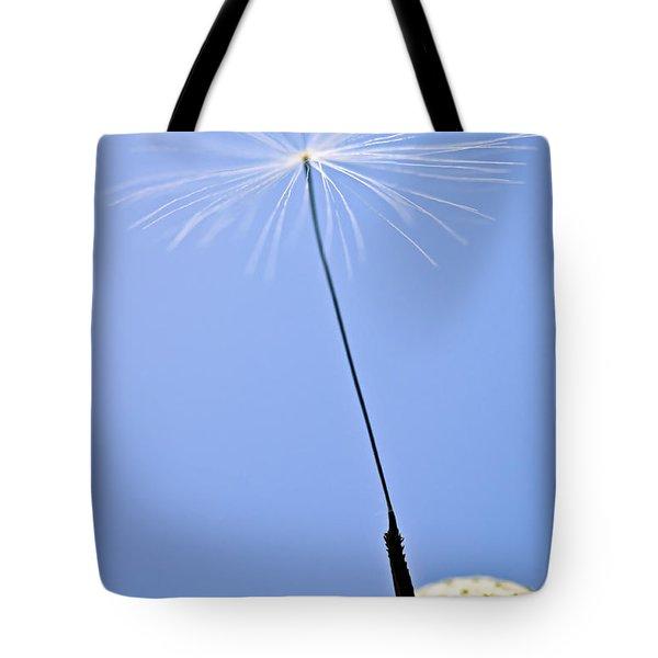 Last Dandelion Seed Tote Bag by Elena Elisseeva