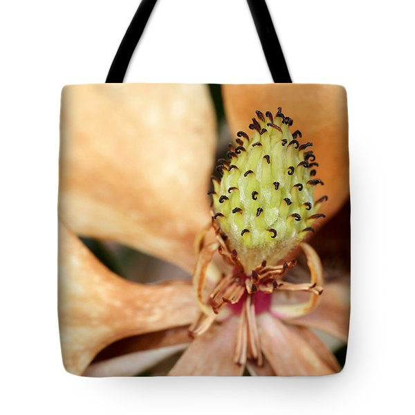 Last Days Of A Magnolia Tote Bag by Sabrina L Ryan