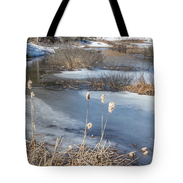 Last Days Of Winter Tote Bag by Jola Martysz