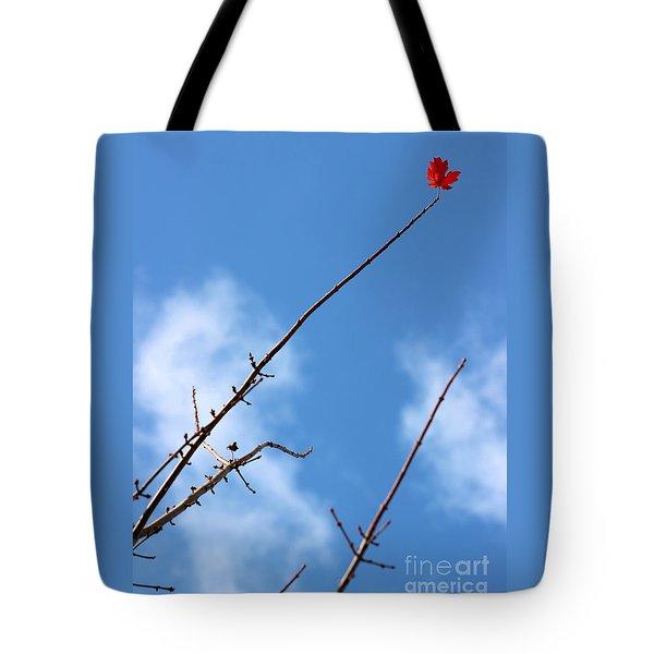 Last Leaf Standing Tote Bag