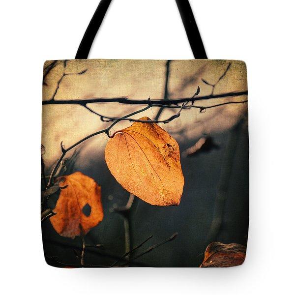 Last Leaves Tote Bag by Taylan Apukovska