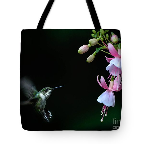 Last Light Tote Bag by Amy Porter