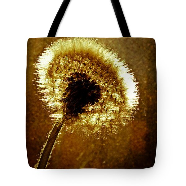 Last Light Of Day Tote Bag by Bob Orsillo