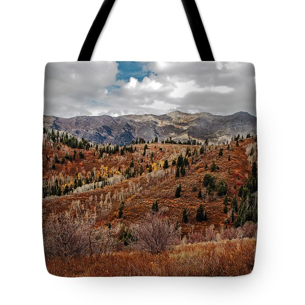 Last Of The Fall Colors In The Wasatch Range Tote Bag
