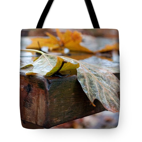 Last Of The Leaves Tote Bag by Gwyn Newcombe