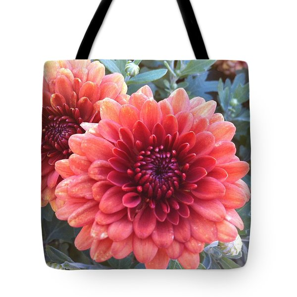 Tote Bag featuring the photograph Last Of The Summer by Denyse Duhaime