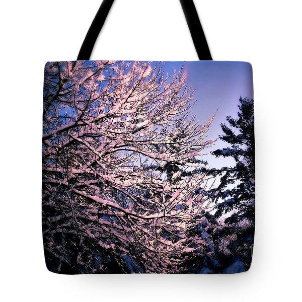 Last Peek Of Winter Sun Tote Bag