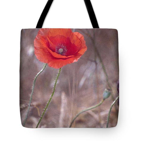 Last Poppy Tote Bag by Guido Montanes Castillo