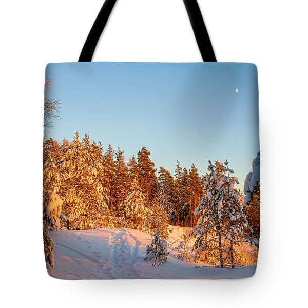 Last Rays Of Light In The Winter Forest Tote Bag