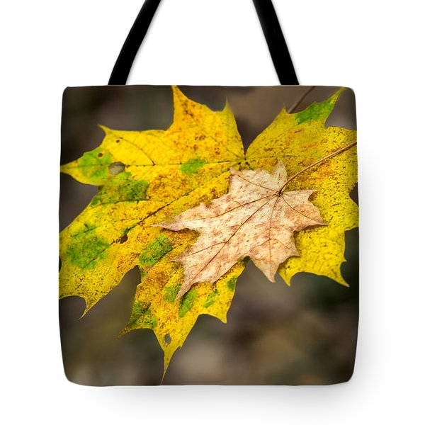 Last Support - Featured 3 Tote Bag by Alexander Senin