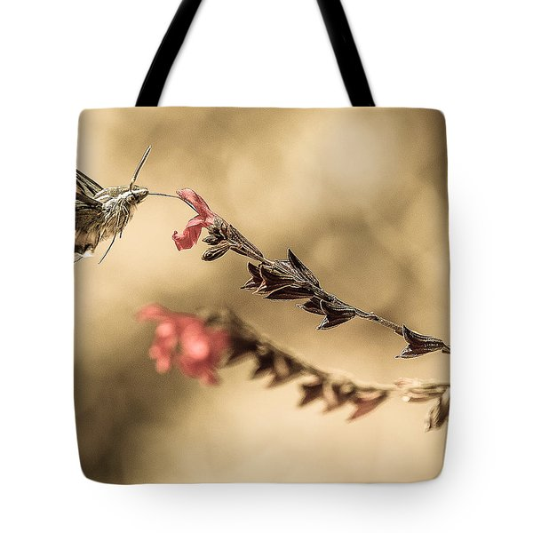 Last Thoughts Tote Bag by Cecil K Brissette