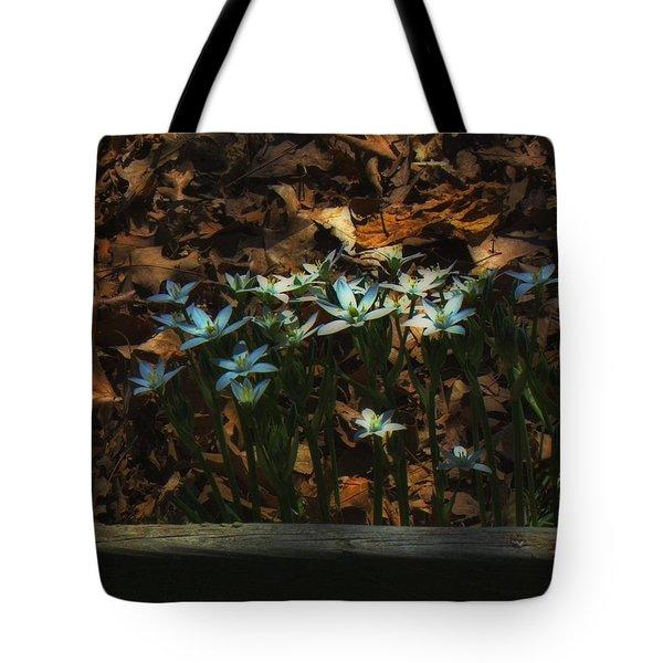 Last Year's Leaves Tote Bag