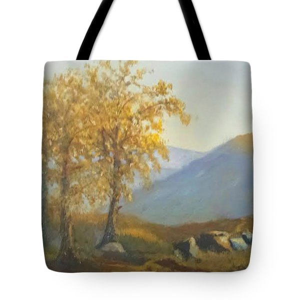 Tote Bag featuring the painting Late Afternoon Glow by Elizabeth Coats