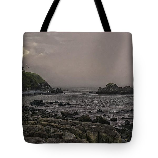 Tote Bag featuring the photograph Late Afternoon Sun On West Quoddy Head Lighthouse by Marty Saccone