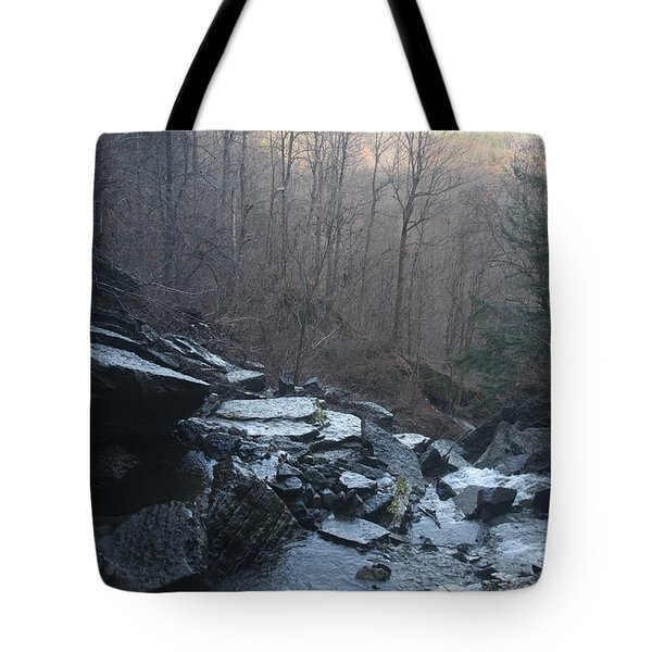 Late Autumn Tote Bag by Vadim Levin