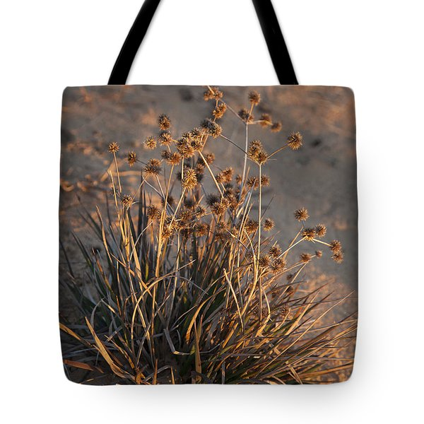 Late Day Color Tote Bag