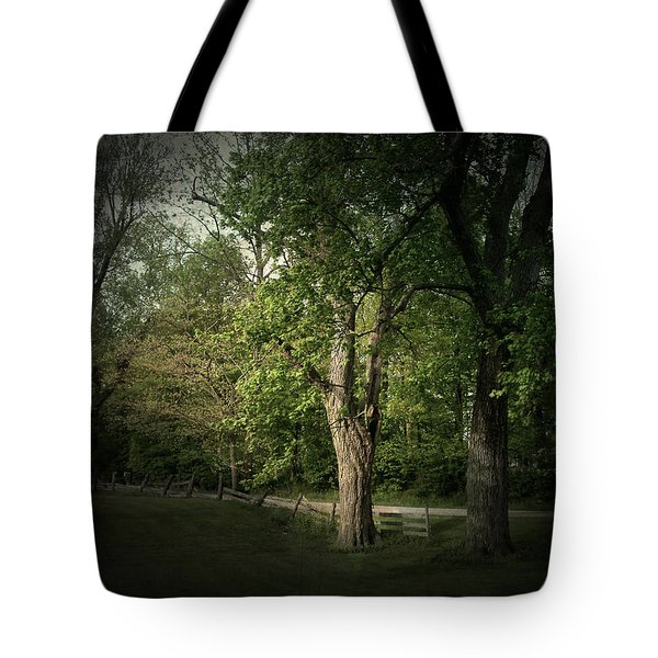 Late Day Drive Tote Bag by Cynthia Lassiter