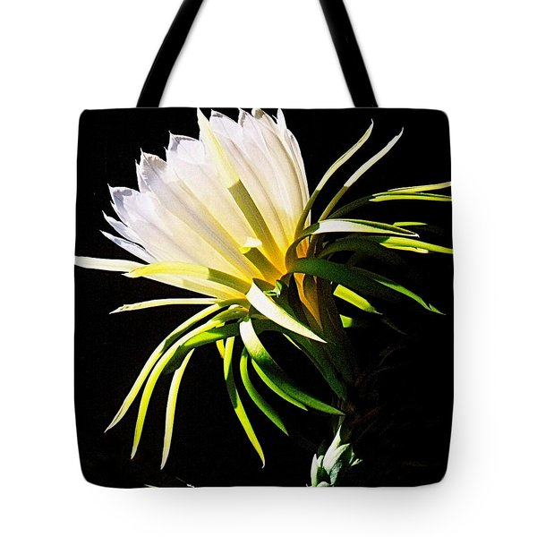 Desert Beauty Tote Bag by Mistys DesertSerenity