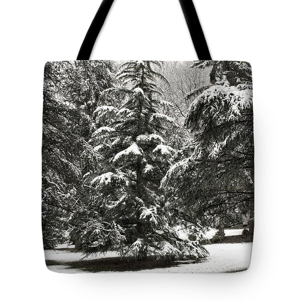 Tote Bag featuring the photograph Late Season Snow At The Park by Gary Slawsky