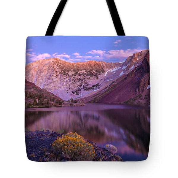 Late Summer Night Dream Tote Bag