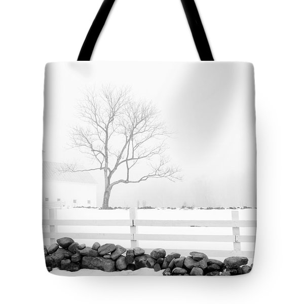 Late Winter Tote Bag by Alana Ranney