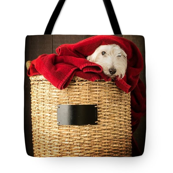 Laundry Day Tote Bag by Edward Fielding