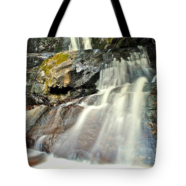 Laurel Falls Smnp Tote Bag