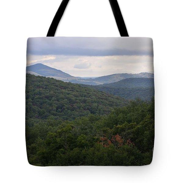 Laurel Fork Overlook II Tote Bag