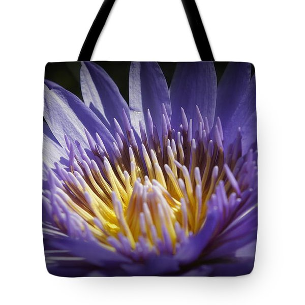 Tote Bag featuring the photograph Lavendar Lily by Laurie Perry