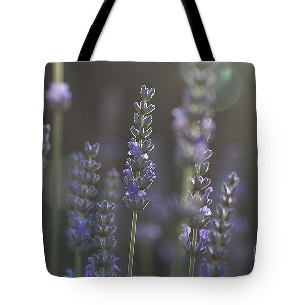 Lavender Flare. Tote Bag by Clare Bambers