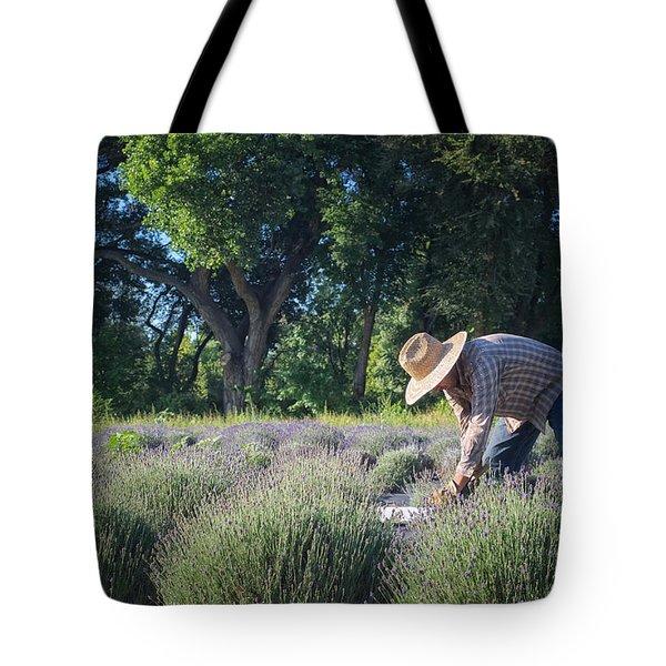 Lavender Harvest Tote Bag