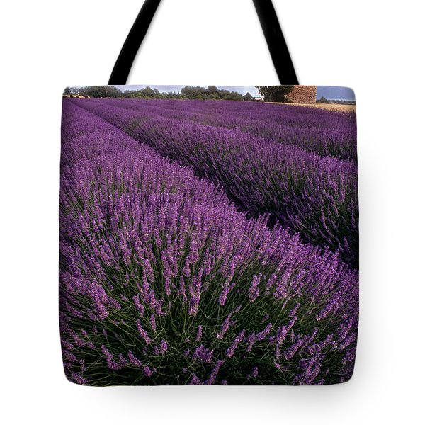 Lavender In Provence Tote Bag