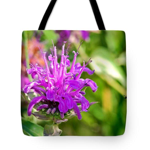Tote Bag featuring the photograph Lavender Pink Bee Balm Wild Bergamot by Karon Melillo DeVega