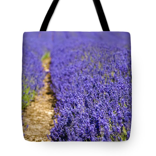 Lavender's Blue Tote Bag by Anne Gilbert