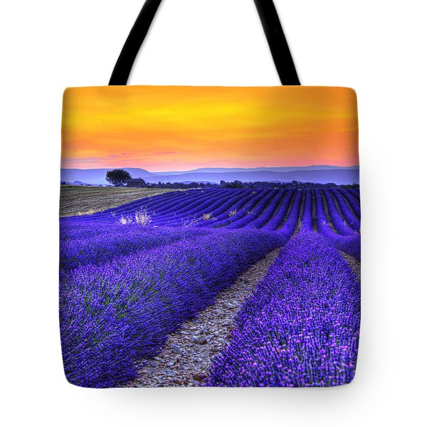 Lavender's Sunset Tote Bag by Midori Chan