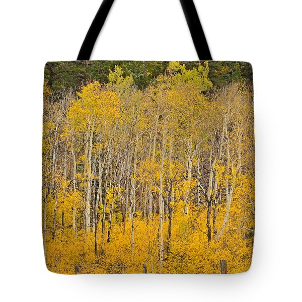 Layers Of Gold Tote Bag