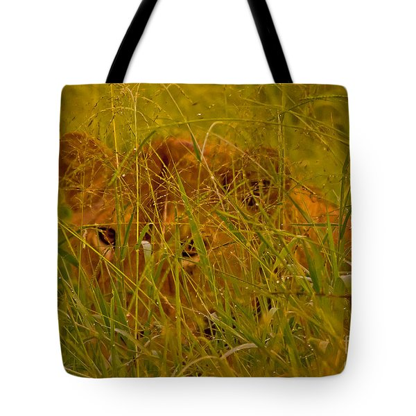 Tote Bag featuring the photograph Laying In The Grass by J L Woody Wooden
