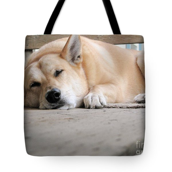 Lazin' On The Porch Tote Bag by Rory Sagner