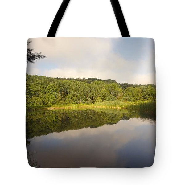 Lazy Afternoon Tote Bag by Michael Porchik