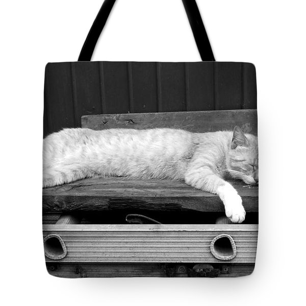 Lazy Cat Tote Bag by Andrea Anderegg