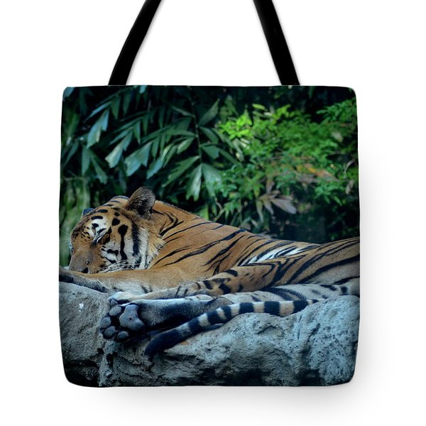 Tote Bag featuring the photograph Lazy Cat by Michelle Meenawong