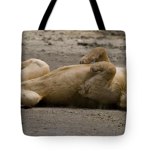 Tote Bag featuring the photograph Lazy Lion by J L Woody Wooden