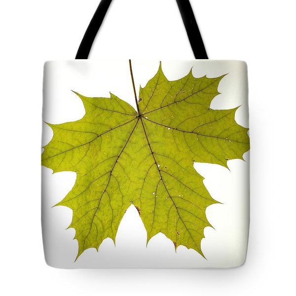 Tote Bag featuring the photograph Leaf 1 by Mariusz Czajkowski