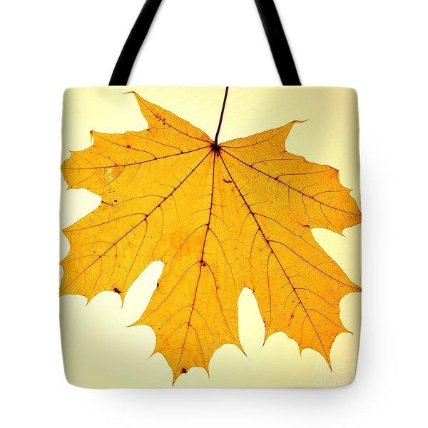 Tote Bag featuring the photograph Leaf 2 by Mariusz Czajkowski
