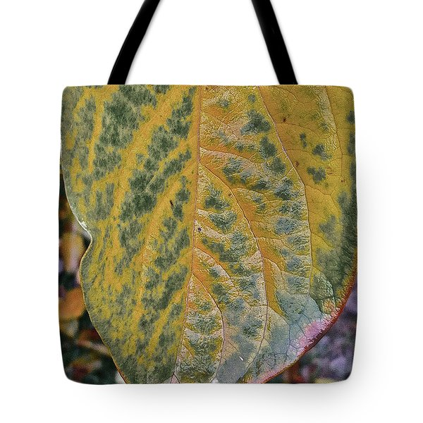 Tote Bag featuring the photograph Leaf After Rain by Bill Owen