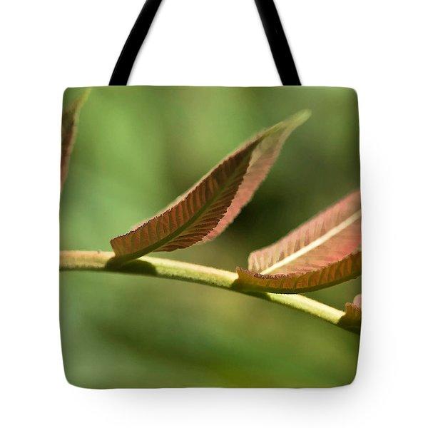 Leaf Bridge Tote Bag