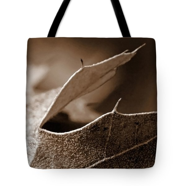 Tote Bag featuring the photograph Leaf Collage 2 by Lauren Radke
