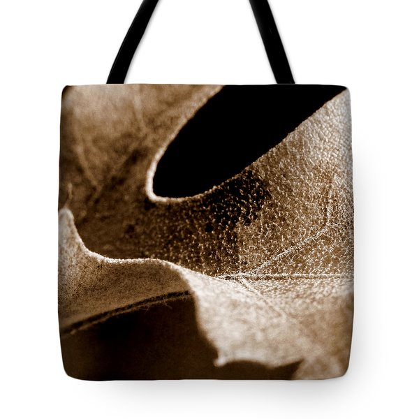 Tote Bag featuring the photograph Leaf Collage 3 by Lauren Radke