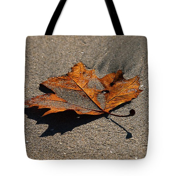 Tote Bag featuring the photograph Leaf Composed by Joe Schofield